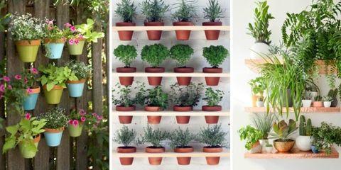 9 Fresh Ideas for a Fun Vertical Garden
