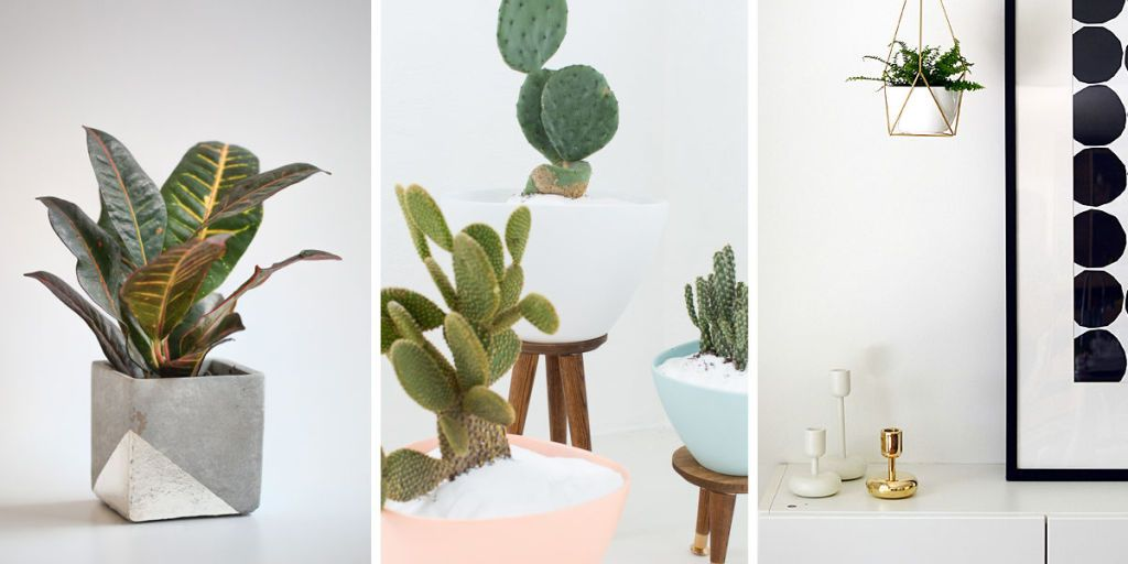 11 DIY Planters Your Houseplants Need