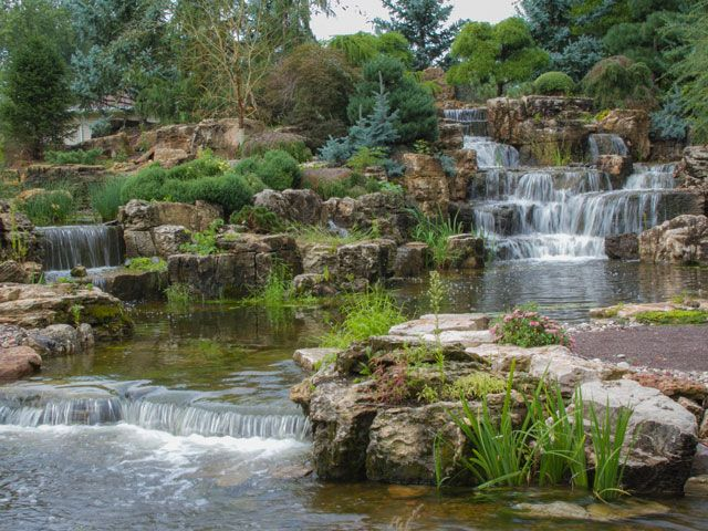 This Is What a Million-Dollar Backyard Pond Looks Like