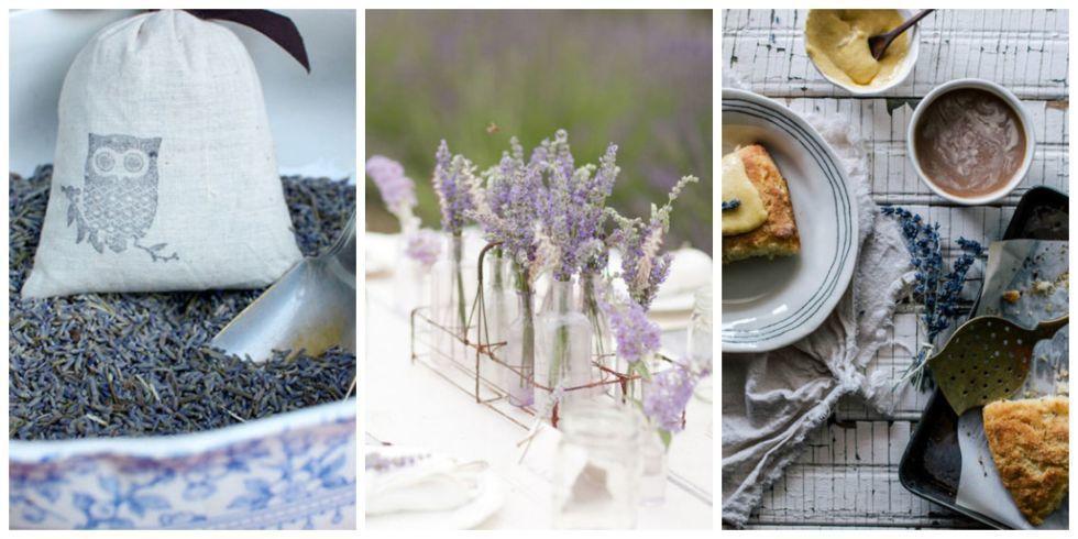 23 Amazing Ways to Use Lavender