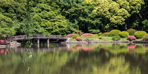 25 Beautiful Japanese Gardens Pictures Of Japanese Garden