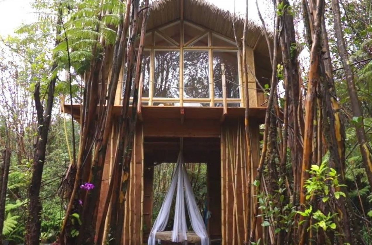 31 Amazing Treehouses You Can Rent In 2019 Best Tree House Vacations