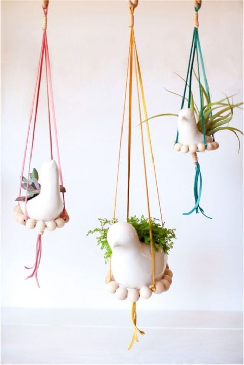 bird planters