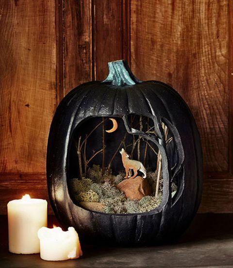 Coyote Pumpkin Candles