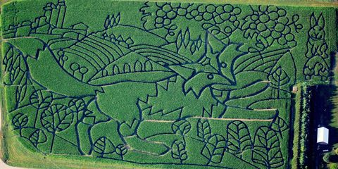 13 Epic Corn Mazes That Are Basically Giant Green Puzzles