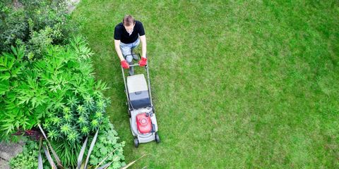 America Loves Lawns
