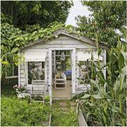Property, Home, Backyard, House, Building, Room, Interior design, Porch, Yard, Furniture,