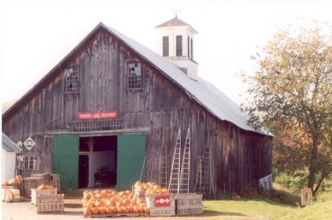 """<p>Pick your own apples at Lebanon, New Hampshire's <a href=""""http://www.povertylaneorchards.com/"""" target=""""_blank"""">Poverty Lane</a> in the trial orchard, Two Below the Barn, which offers dozens of different varieties. The property offers free tastes of everything it grows or makes, wagon rides on fair weekends, picnic tables all season long, pastoral views, and tons of fenced-in space for kids to play and wander.</p>"""
