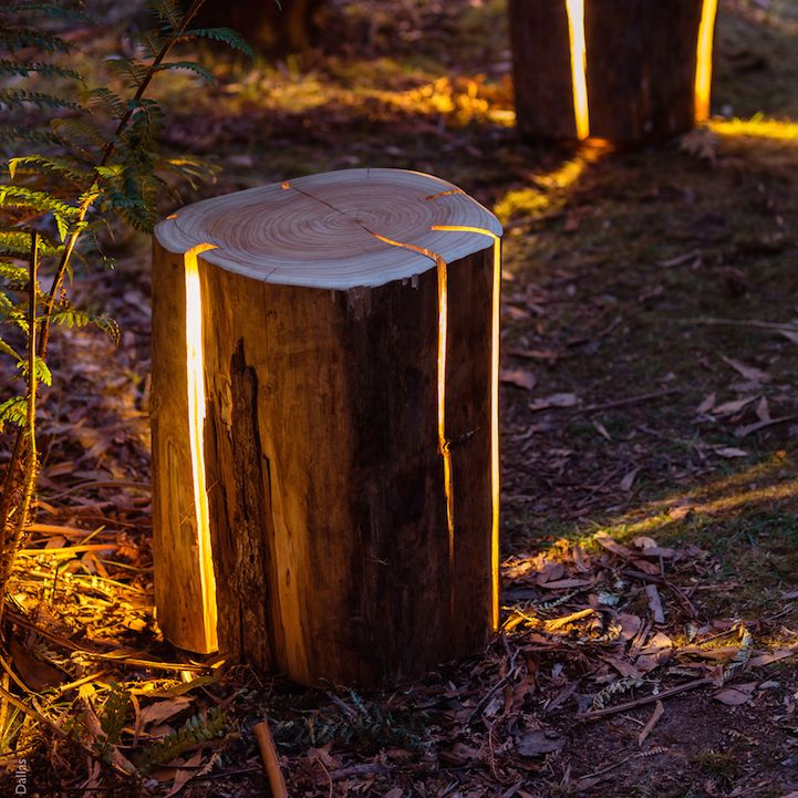 Illuminated Tree Stumps Are a Clever Take on Natural Decor