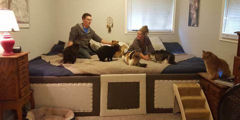 Human, Room, Lighting, Comfort, Vertebrate, Interior design, Mammal, Carnivore, Home, Sitting,