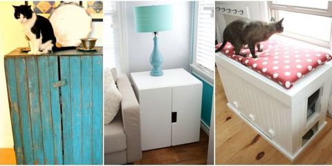 8 Clever (and Cute!) Ways to Disguise a Litter Box