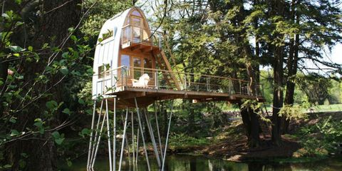 These Incredible Treehouses Are for Grown-Ups Only