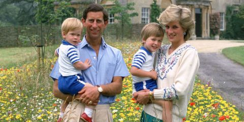 Princess Diana Prince Charles William Harry British Royal Family Celebrity Facts