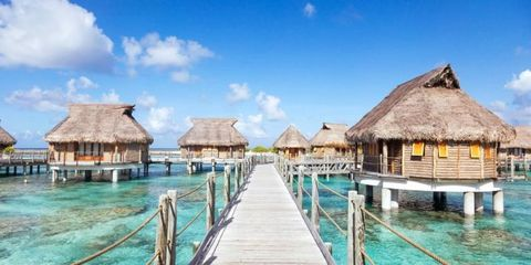 10 Travel Experts Reveal Their Dream Vacations