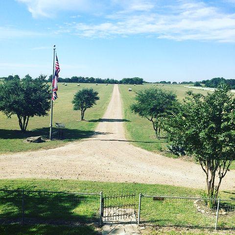 Flag, Land lot, Plain, Pole, Grassland, Cumulus, Plantation, Field, Park, Landscaping,