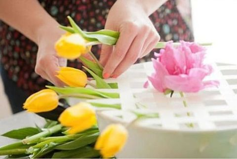 Yellow, Petal, Flower, Pink, Floristry, Flowering plant, Nail, Flower Arranging, Floral design, Cut flowers,