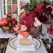 Serveware, Dishware, Petal, Tablecloth, Table, Tableware, Produce, Drinkware, Cutlery, Linens,