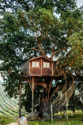 treehouses in italy