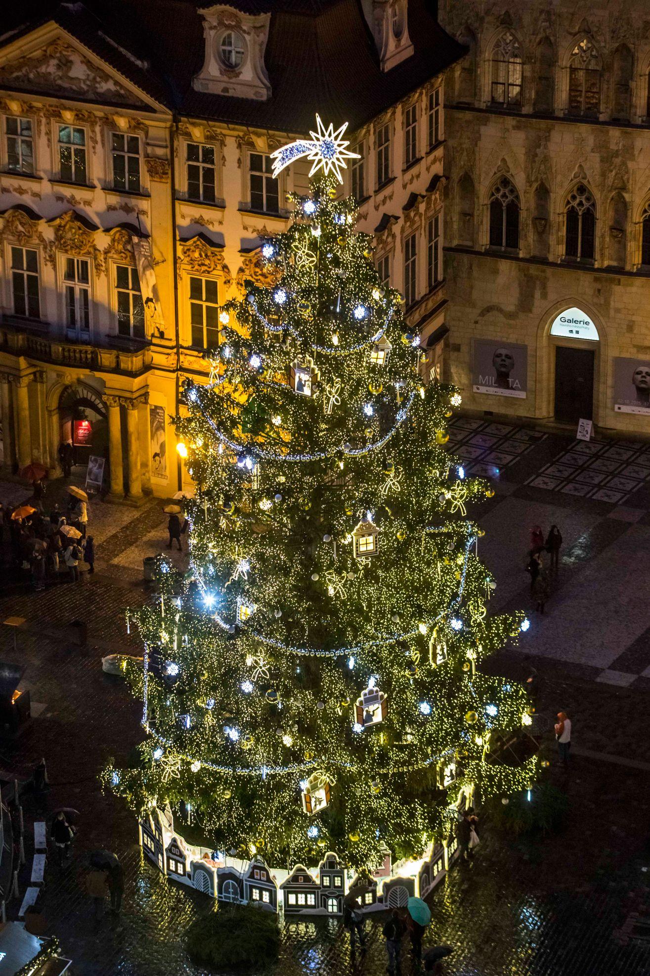 magical christmas trees worth seeing christmas tree virtual tour