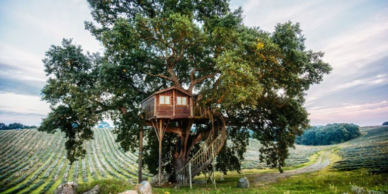 25 Amazing Treehouses You Can Rent In 2018 Best Tree