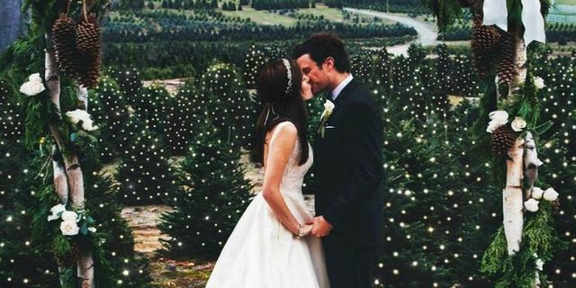 christmas tree farm wedding unique wedding locations - Christmas Tree Farms