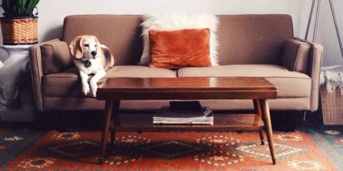 The Actual Lifespan of 7 Common Household Furnishings