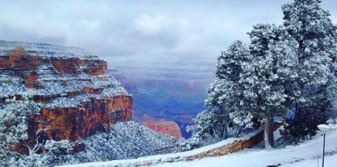 A Morning Snowstorm Has Turned the Grand Canyon Into a Winter Wonderland