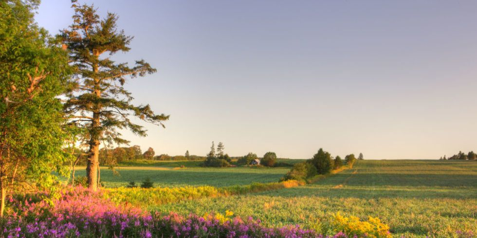 """26 Stunning Images of the Canadian Island That Inspired """"Anne of Green Gables"""""""