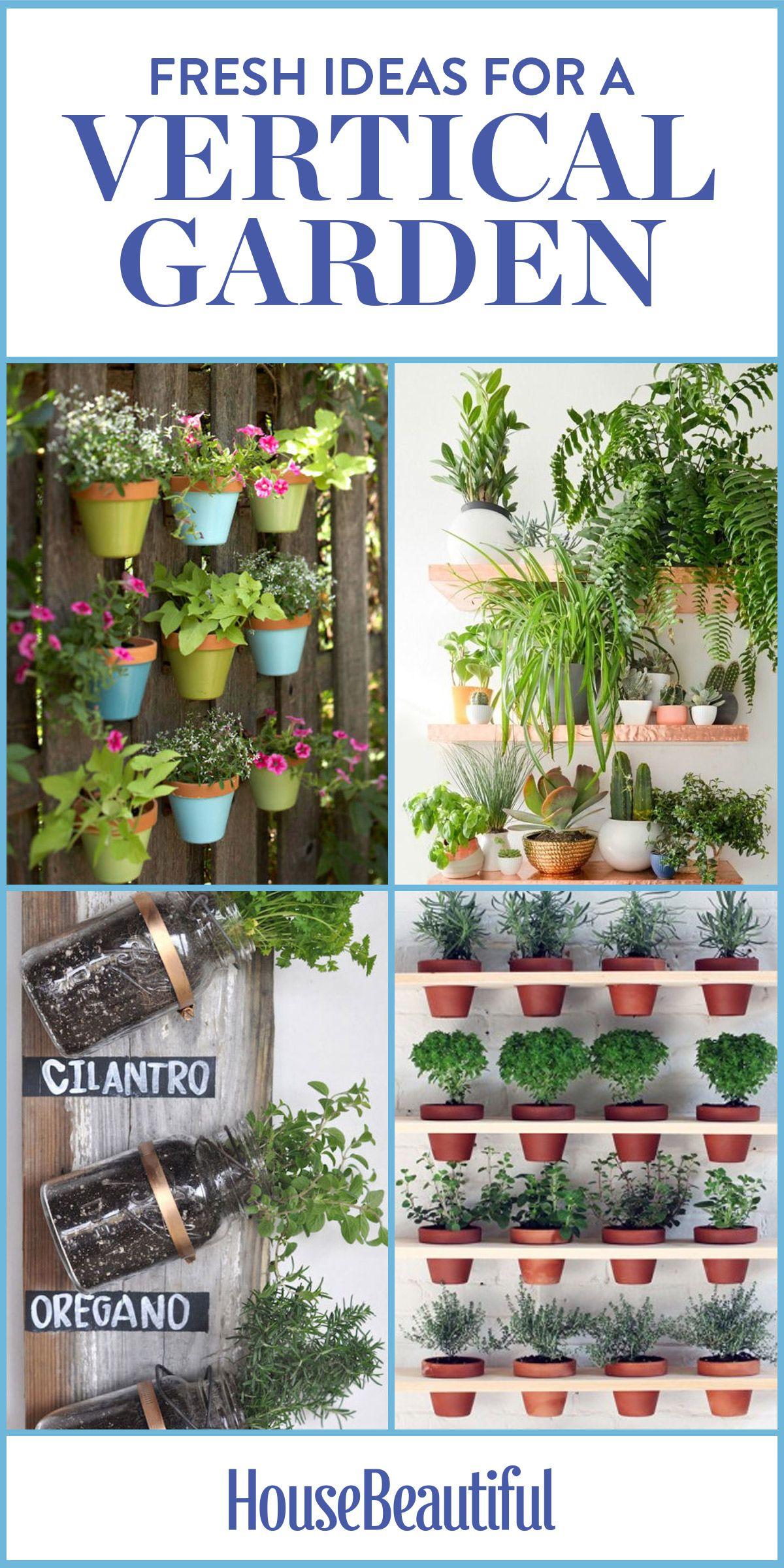 gardening grow a with garden to how tips some steps inspira vertical acegardener