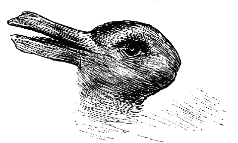 Do You See a Duck or a Bunny? The Answer Is Quite Telling