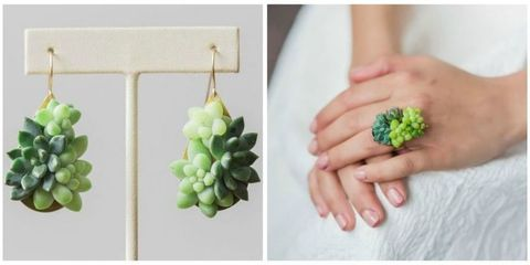 This Succulent Jewelry Actually Grows While You Wear It