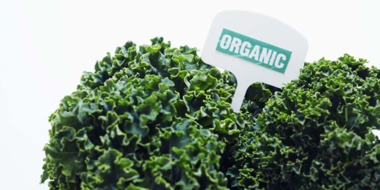 That Pricey Organic Label Might Be One Big Lie