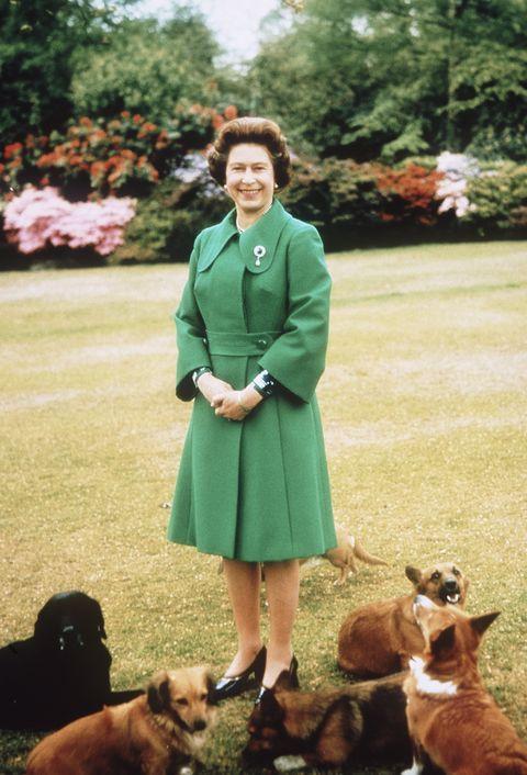 Queen Elizabeth with corgis