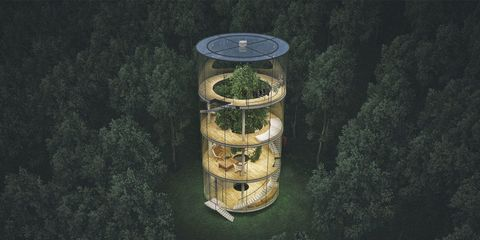 This Isn't a Glass House, But It Isn't a Tree House Either