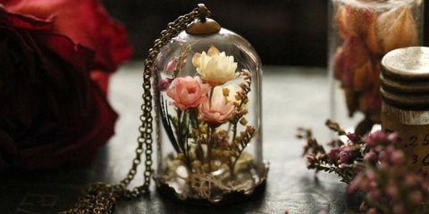 terrarium jewelry