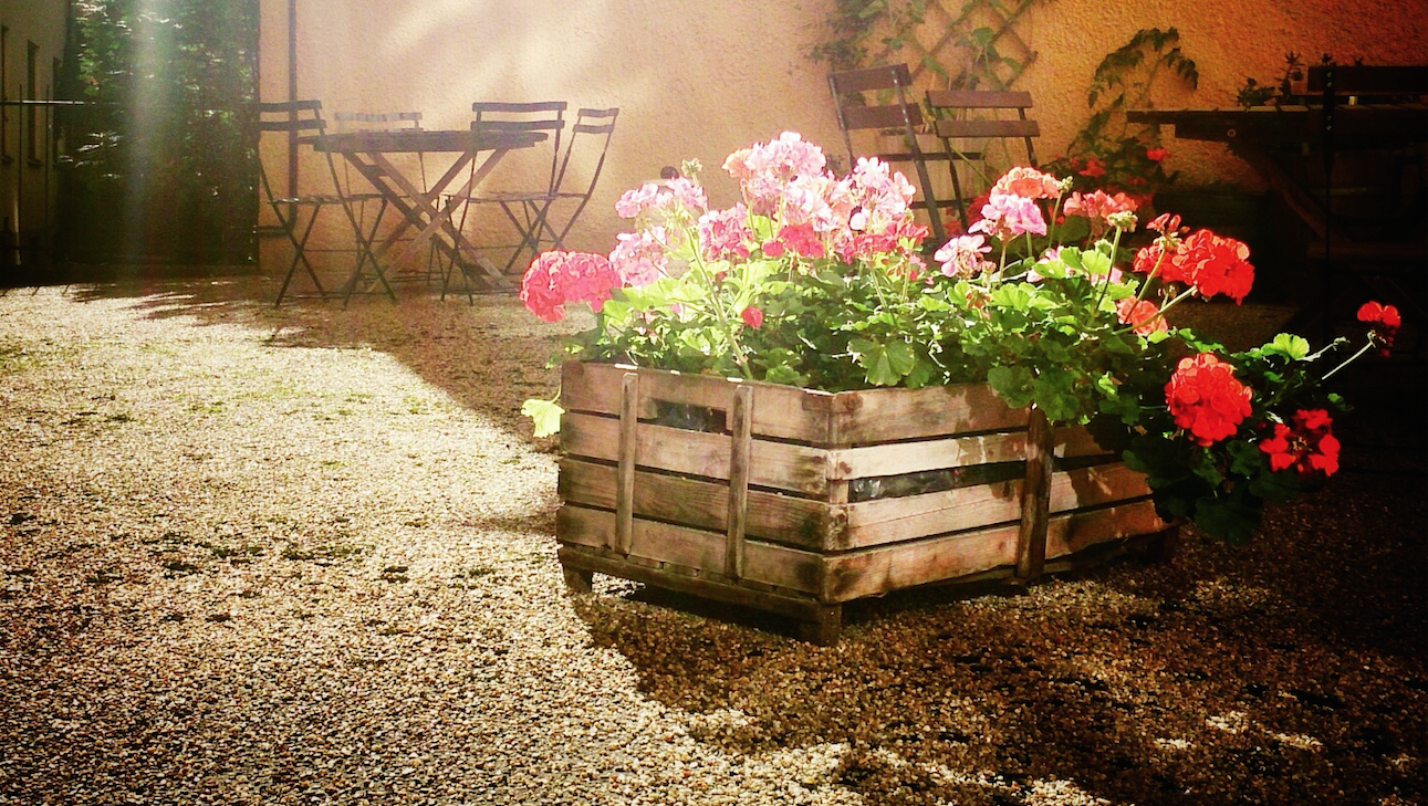 10 Best Raised Garden Beds in Spring 2016 - Garden Beds, Boxes and ...