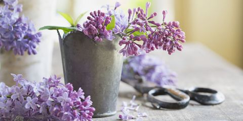 10 Creative Ways to Decorate Your Home for Spring