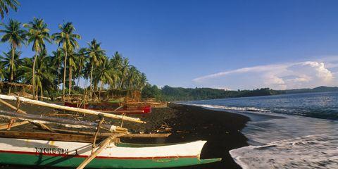 Tangkoko Nature Reserve, Indonesia