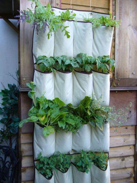 shoe organizer hanging garden