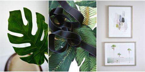 Green, Leaf, Botany, Terrestrial plant, Vascular plant, Plant stem,