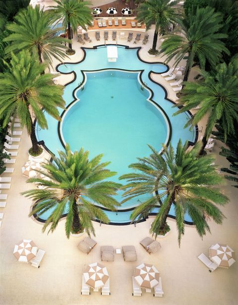 Raleigh Hotel Pool in Miami