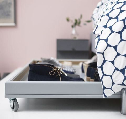 Picture frame, Houseplant, Baggage,