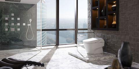 Glass, Fixture, Toilet, Transparent material, Bag, Toilet seat, Daylighting, Snow, Aluminium, Waste container,