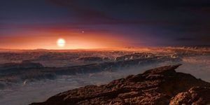 new planet like earth, proxima b