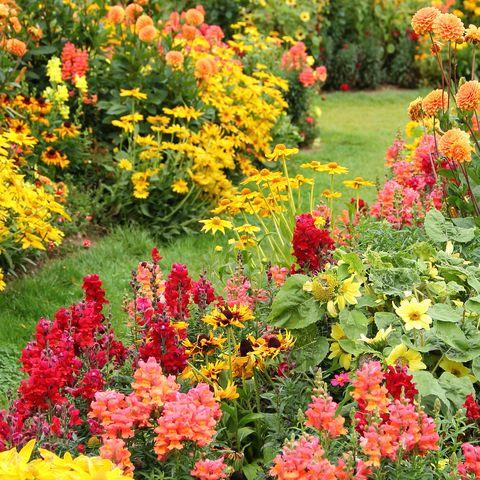 Gardening Tips - Landscaping and Garden Ideas