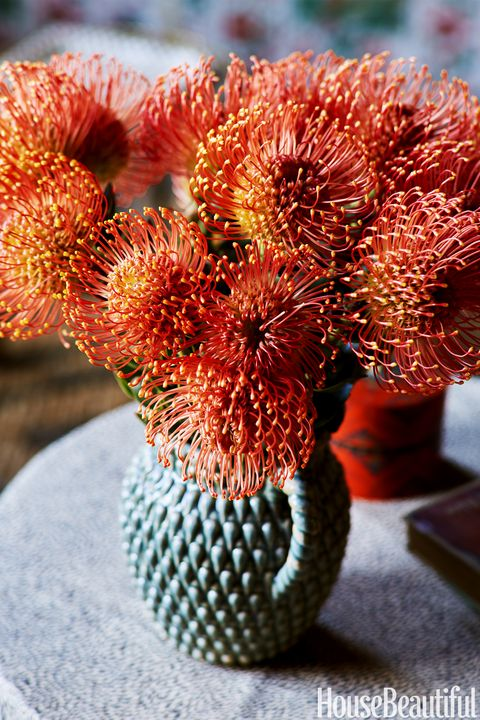 "<p>On a side table, a vintage vase is filled with vibrant pincushion Protea flowers.<span class=""redactor-invisible-space"" data-verified=""redactor"" data-redactor-tag=""span"" data-redactor-class=""redactor-invisible-space""></span></p>"