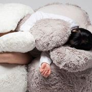 Skin, Fur, Footwear, Textile, Room, Sleep, Stuffed toy, Linens, Pillow, Bedding,