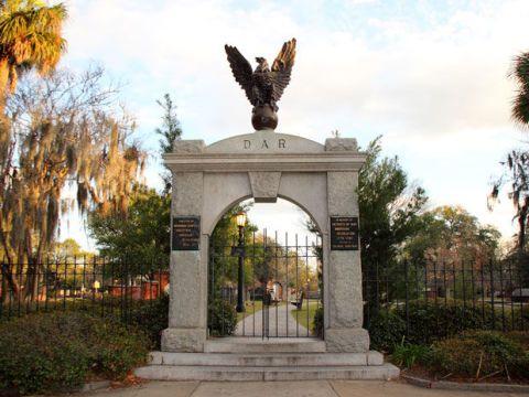 Tree, Bird, Shrub, Woody plant, Arch, Wing, Walkway, Falconiformes, Bird of prey, Monument,