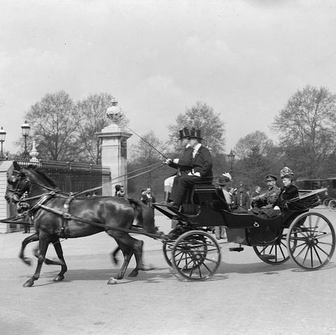 Horse and buggy, Horse, Carriage, Horse harness, Vehicle, Mode of transport, Chaise, Cart, Chariot, Rein,