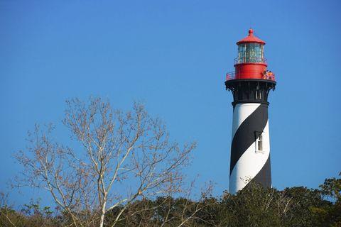 vegetation, branch, tower, beacon, twig, plant community, leaf, landmark, woody plant, lighthouse,